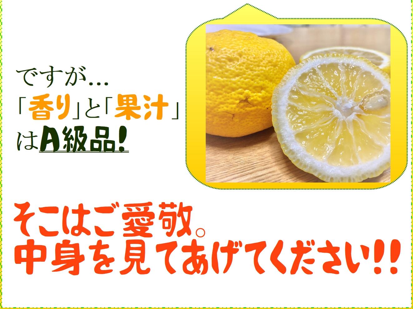 yuzu050.jpg