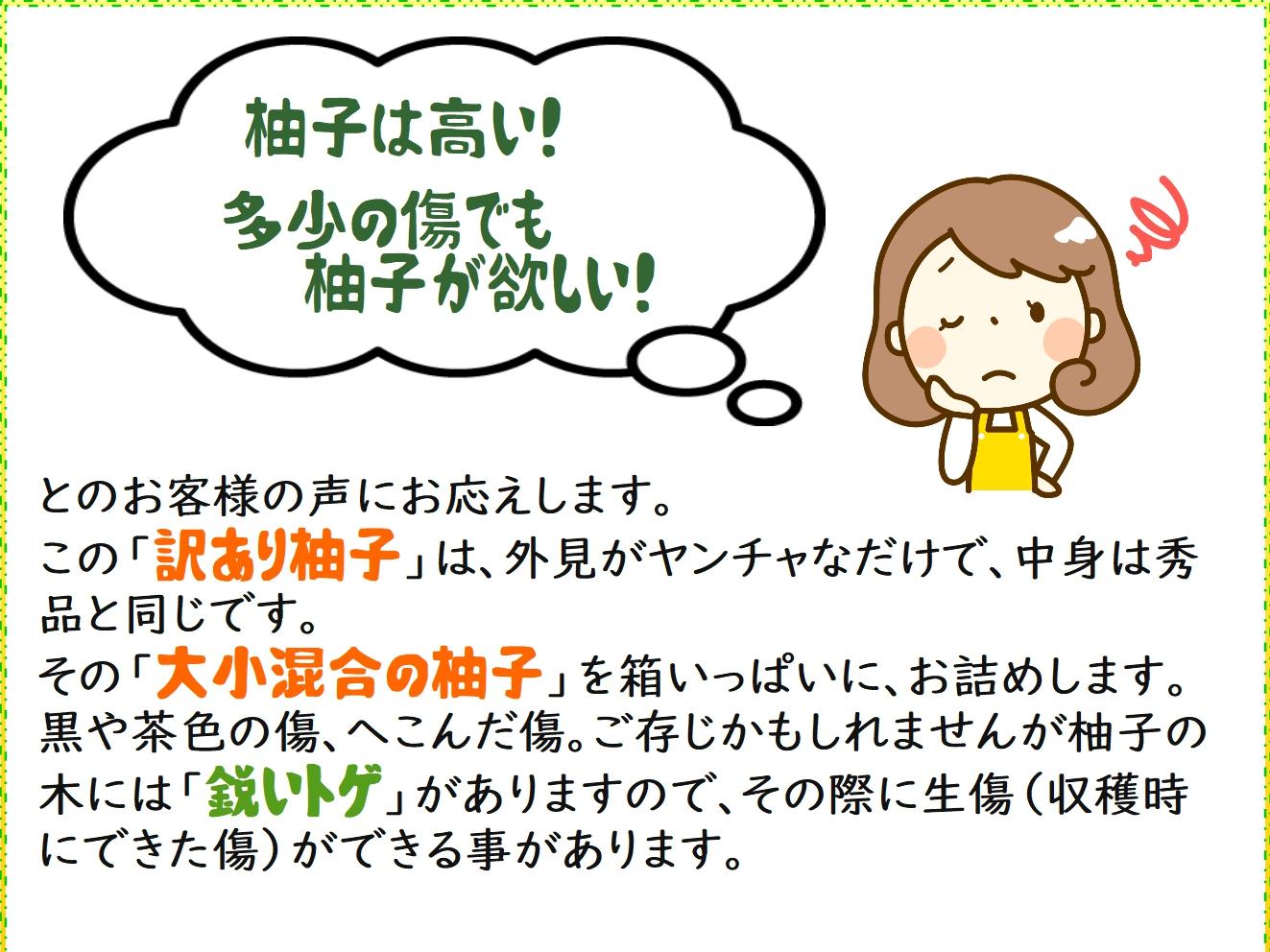 yuzu052.jpg