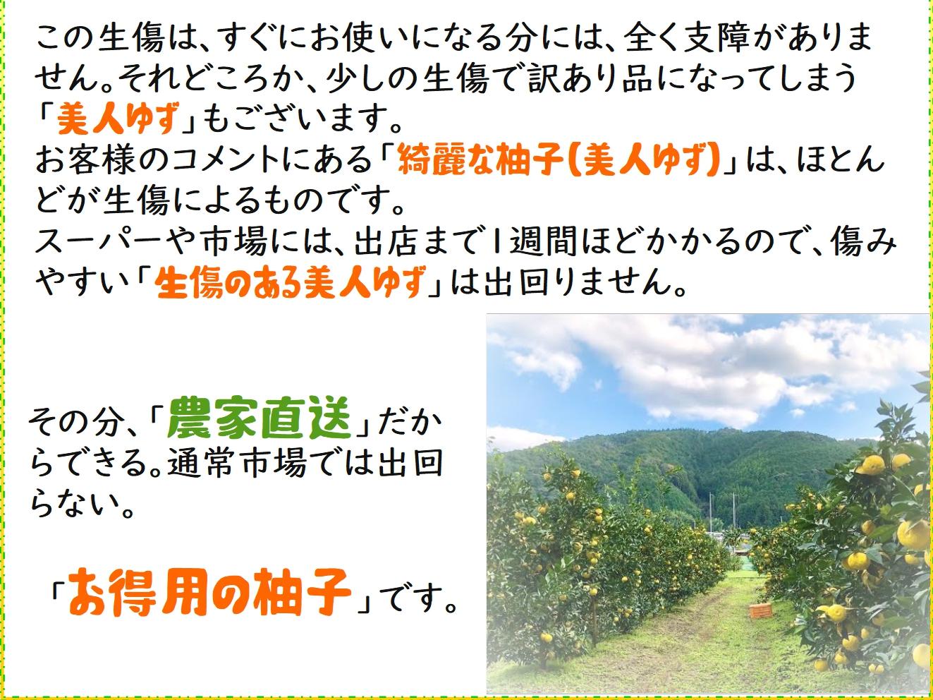 yuzu059.jpg