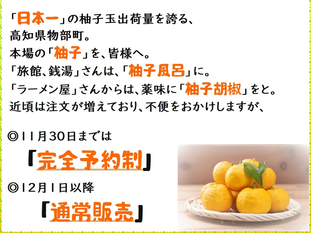 yuzu060.jpg
