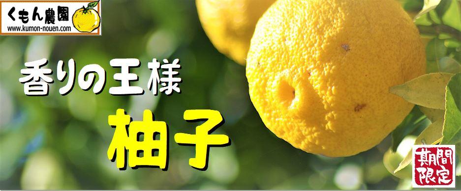 yuzutop.JPG